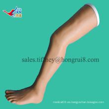 Modelo de pierna de práctica de ISO Vivid Suturing, modelos de sutura quirúrgica