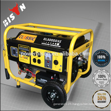 Bison Japanese technology LPG high quality generator