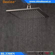 Salle de bains Mist Fall Wall Hanger Eau pulvérisée Top douche brossé