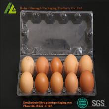 pato cartón de huevos para la venta