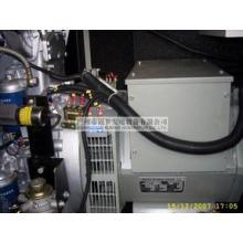 Дизельный генератор genset генератор Pk30800 с переключателем Schneider