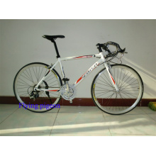 Hot Sale Sports Road Bikes, Track Bicycles (FP-RB-10)