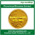 Picrorhiza Rhizome Extract Berberine HCl Powder 97% 98%