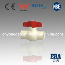 ASTM D2846 Era Certification CPVC Valve Manufacture Made in China Era Plastic Ball Valve CPVC Valve