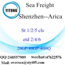 ميناء شنتشن الشحن البحري الشحن إلى أريكا