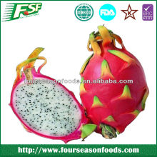 2014 High evaluation iqf dragon fruit slice