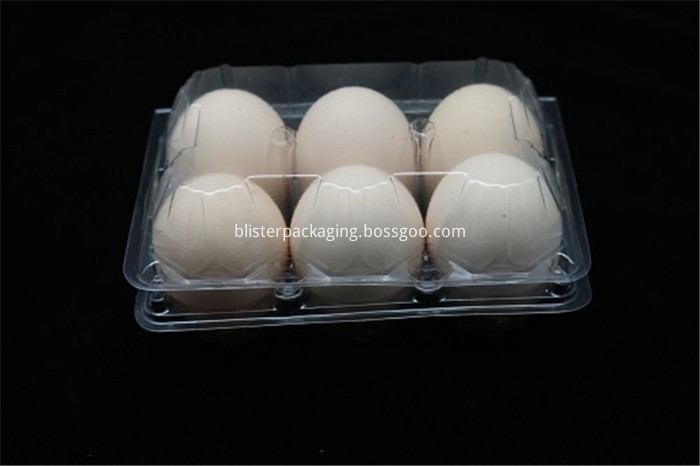 Chicken Egg Package