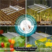 Lâmpada LED crescente para crescimento de plantas 600W