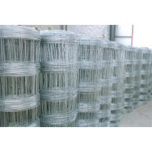 Hot Dipped Galvanized Goat and Sheep Fence/Grass Field Fence