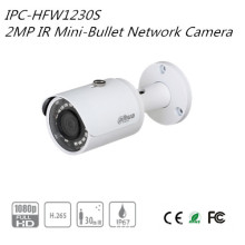 Dahua 2MP IR Mini-Bullet Network Camera(IPC-HFW1230S)