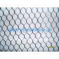 HOT SALE!!!Hexagonal Wire Netting(factory&exporter)