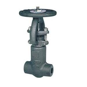 Waterstroom Gate Valve