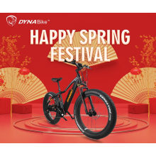 Electric Mountain Bicycle Electric Fat Tire Bike 750W Electric Bike Mountain Ebike