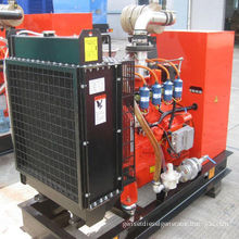 300kw 600kva Automatic Start Water Cooled Lpg Gas Backup Generator With Over Frequency Protection