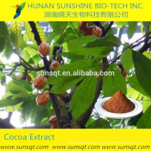 Medizin für Sexual Power Sex Ausdauer Kakao Baum Samen Kakao Extrakt