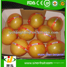 Frische süße Honig Pomelo aus China / Pomelo Lieferant