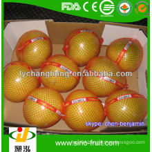 Fresh sweet Honey pomelo from China/ pomelo supplier