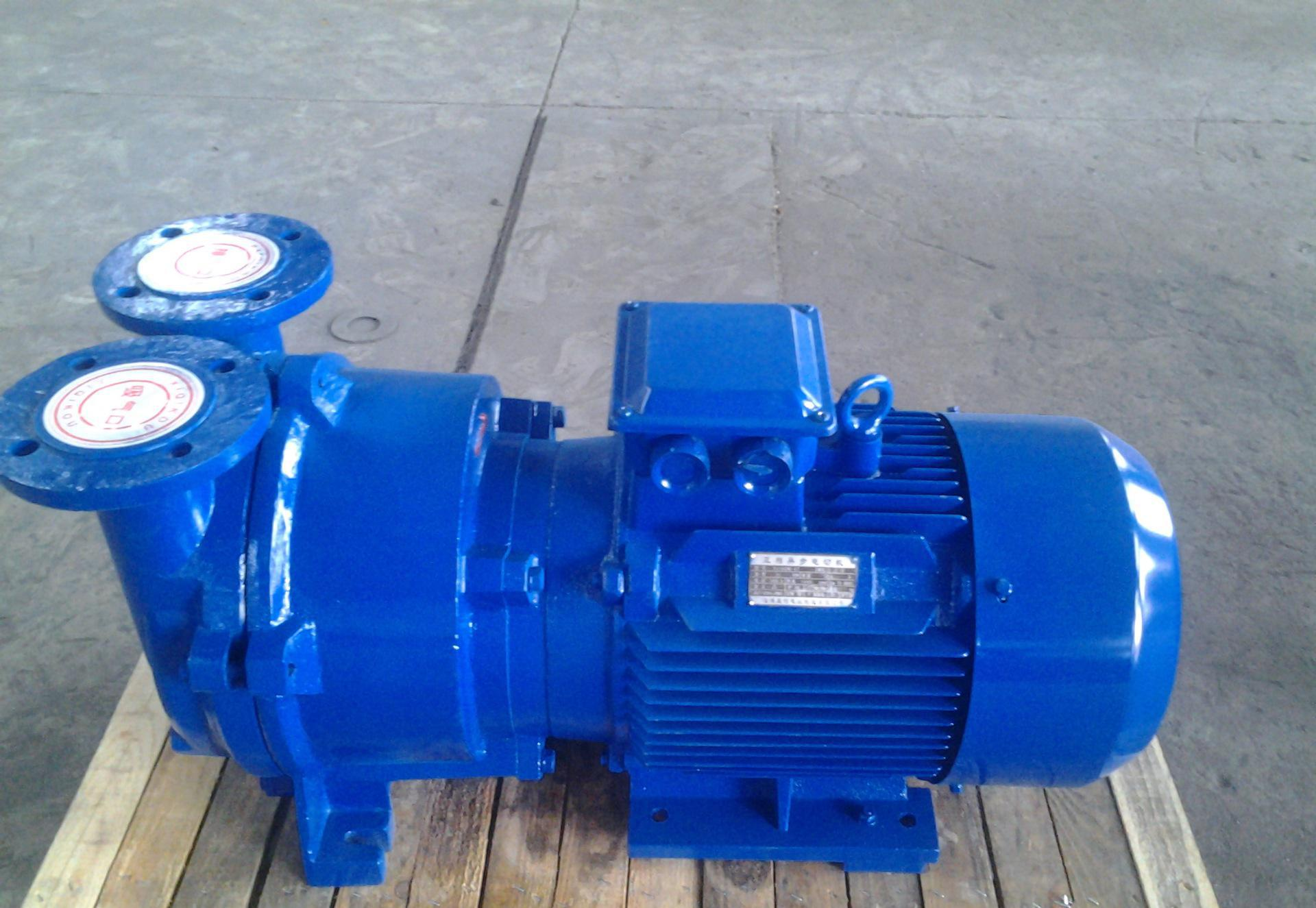 2BV series explosion-proof water ring vacuum pump 2