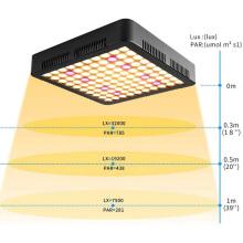 Panneau d'éclairage LED Grow 1000W
