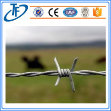 Concertina Barbed Wire/High Quality Concertina Barbed Wire