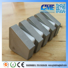 Personalizar Super Strong Sintered Irregular SmCo Magnete
