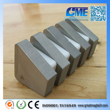 Personalizar Super Strong Sintered Irregular SmCo Magnete