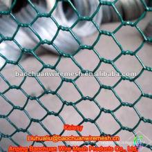 Grüne pvc beschichtete Metall aviaries für die Tierhaltung