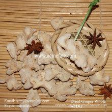 Gewürz Kraut einzigen Gewürz Bio getrocknete Ingwer Export Preise