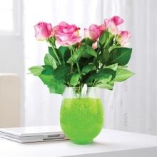 다채로운 식물 장식 크리스탈 토양 매직