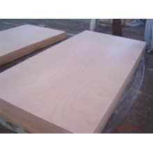 Hot! Commercial Plywood/Okoume Plywood