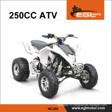 250cc Zongshen ATV