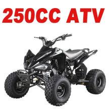 250CC AUS STRASSE ATV (MC-357)