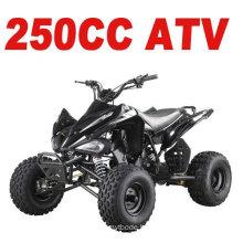 250CC OFF ROAD ATV(MC-357)