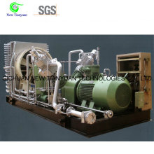 1300nm3h Large Displacement Air Cooling Mode Piston Gas Compressor