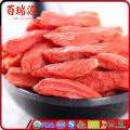 Anti-aging chinese wolfberry bayas de goji