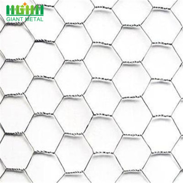 Hot-sale Woven Bird Cage Hexagonal Wire Mesh Fence
