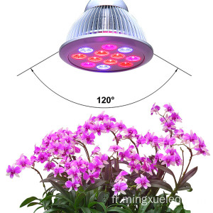 Helper Of Family Plant Light et serre 12w Par LED poussent de la lumière