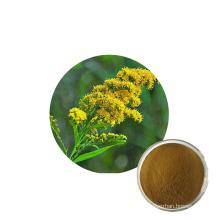 Supply Best price Solidago decurrens Lour golden rod extract