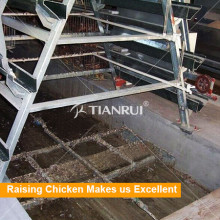 Automatic Scrapper Battery Chicken Manure Cleaning Equipment