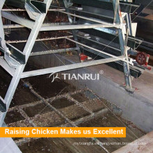 Sistema de eliminación de estiércol de excremento de aves de corral Chicken Farm