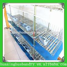 La volaille à grande échelle a utilisé des cages de lapin à vendre
