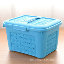 Colorful Weave Design Plastic Storage Box with Handle (SLSN024)