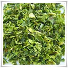 Grânulo de pimentão fresco verde (60-80)