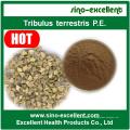 Стандартизованный экстракт Tribulus Terrestris Saponins