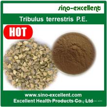 Extrait standardisé Tribulus Terrestris Saponins