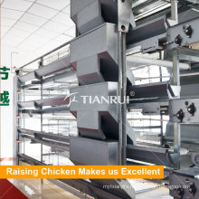 Automatic battery layer chicken cage
