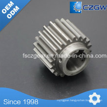 OEM Transmission Gear Drum Gear for Various Machinery