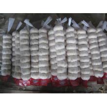 Pequeño paquete de malla de embalaje de ajo blanco puro