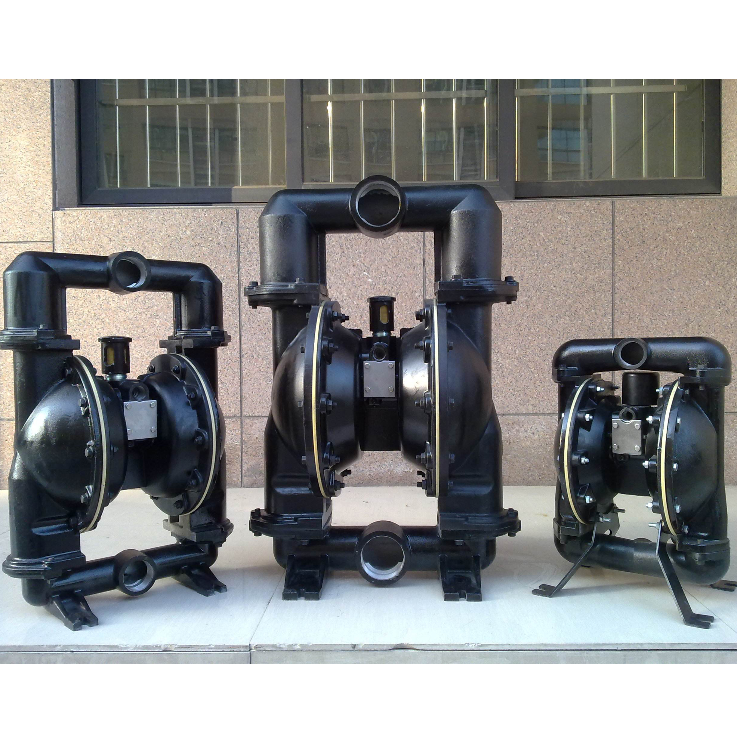 Diaphragm Pump (48)
