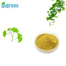 Herbal Extract Ginkgetin 24% Ginkgo Biloba Extract Powder Softgel Capsule